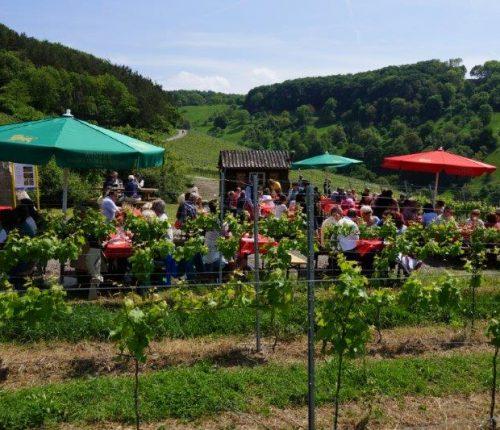 """Man sieht zahlreiche Menschen an Holzbänken und -tischen sitzen, sie genießen das schöne Wetter bei """"Wein über Berg und Tal"""" in Eberstadt"""