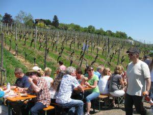 Mehrere Besucher und Besucherinnen des Esslinger Weinwandertages sitzen gemütlich beisammen und trinken Wein der Esslinger Weingärtner