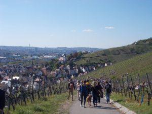 Eine Gruppe Teilnehmer und Teilnehmerinnen des Weinwandertages in Obertürkheim