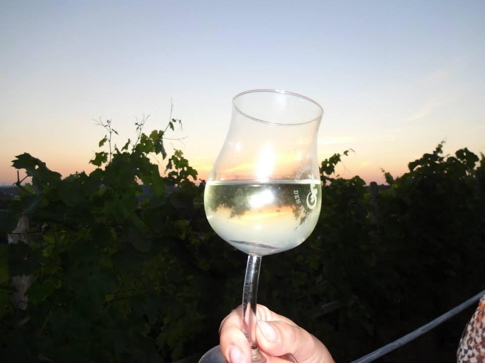 Man sieht das extra für die Schräge WeinNacht kreierte Weinglas, mit schrägem Henkel.