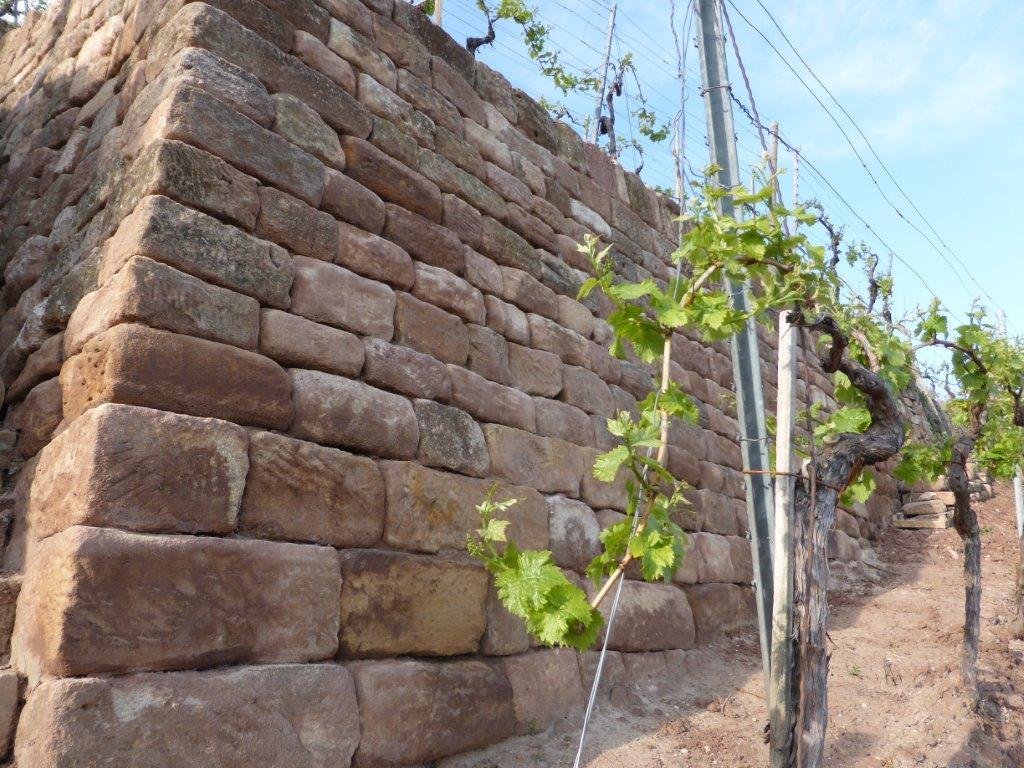 Eine vorbildlich instand gesetzte Trockenmauer