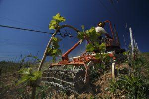Bodenbearbeitung mit Grubber und Krümlerwalze