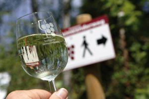Der Stuttgarter Weinwanderweg