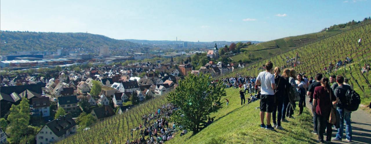 Besucher am Weinwandertag auf dem Ailenberg