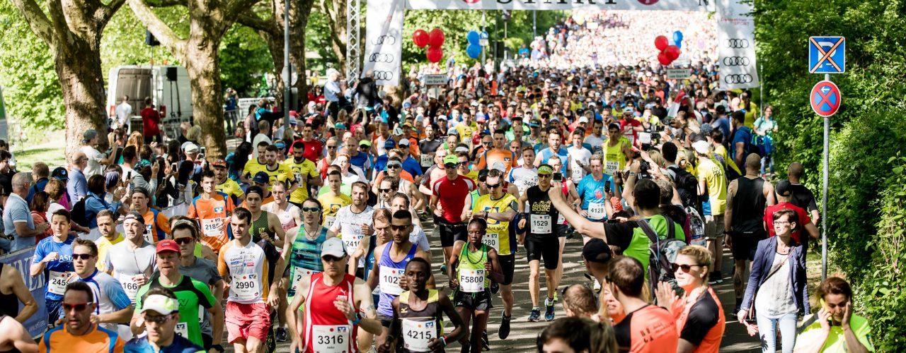 Startschuss zum Trollinger Marathon