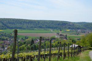 Ausblick auf Gundelsheim