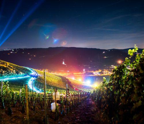 Das Event Leuchtender Weinberg
