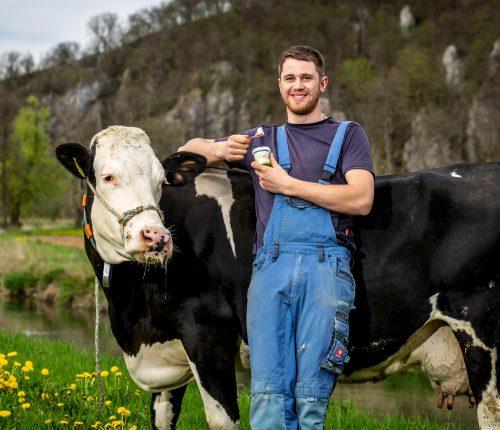 Kuh Nummer 43 mit Betreuer Lukas an der Lauter, Lukas genießt ein Lauertal Eis