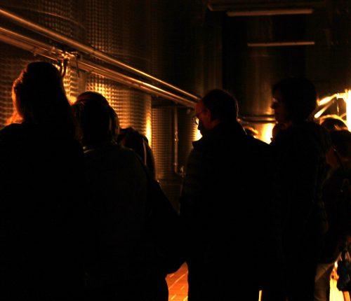 Im Keller der Heuchelberger bei Gläserne Produktion
