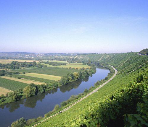 Hessigheimer Felsengärten, Schönste Weinsicht 2016