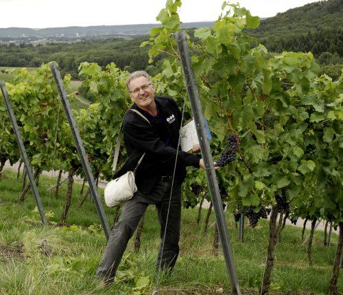 Volker Thunich ist Weindozent und Weinerlebnisführer
