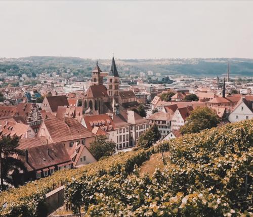 Blick über Esslingen und die Steillage an der Burg