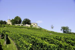 Burg Weibertreu bei der KJ7 4-Tälertour