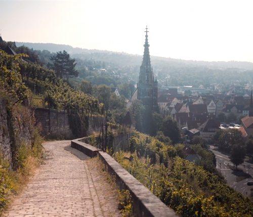 Weinerlebnisweg Esslingen