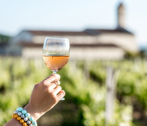 Live Online-Weinprobe der Lauffener Weingärtner | man sieht eine Hand die ein Weinglas vor den Weinreben erhebt