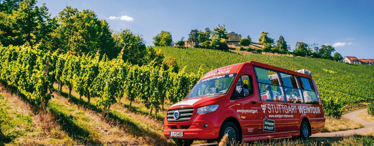 Weinberg, roter Bus