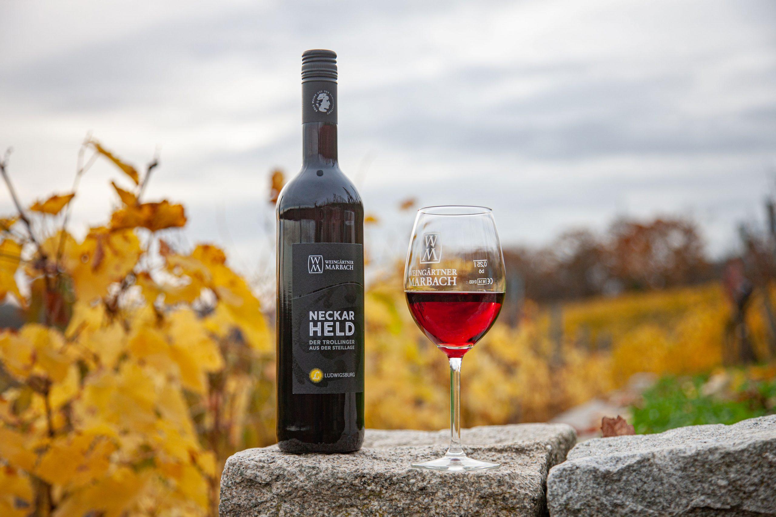 Ludwigsburg im Herbst: Was gibt es schöneres als ein Gläschen Neckarheld der Weingärtner Marbach