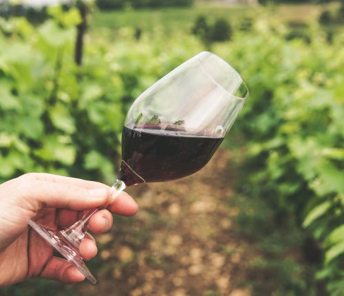 Weinjahr 2020 in Württemberg