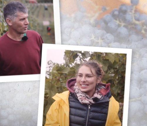 Rainer Döbler und Tamara Elbl über Biowein