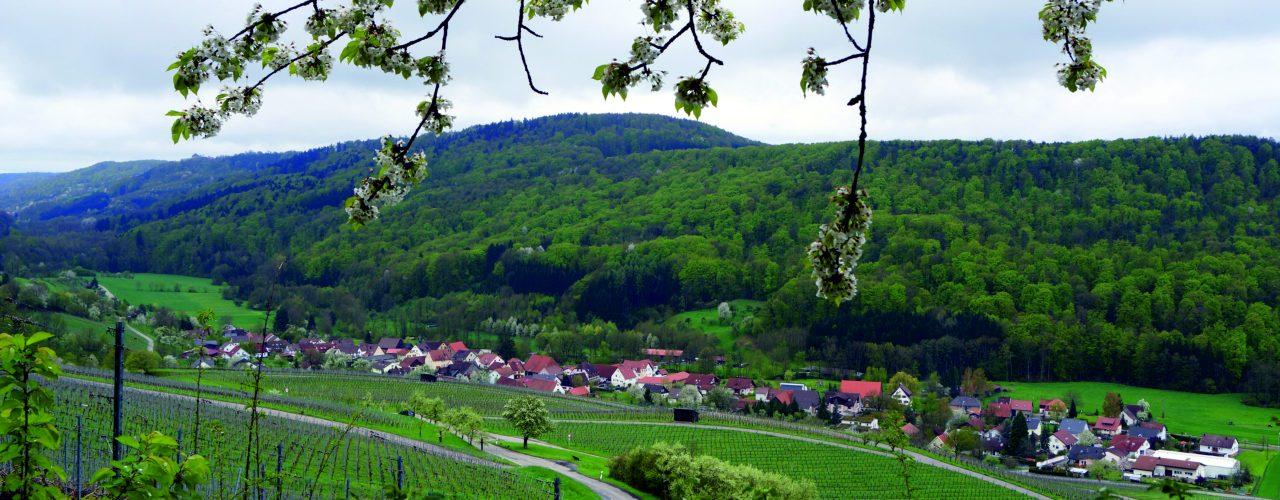 Bretzfeld, Geddelsbach