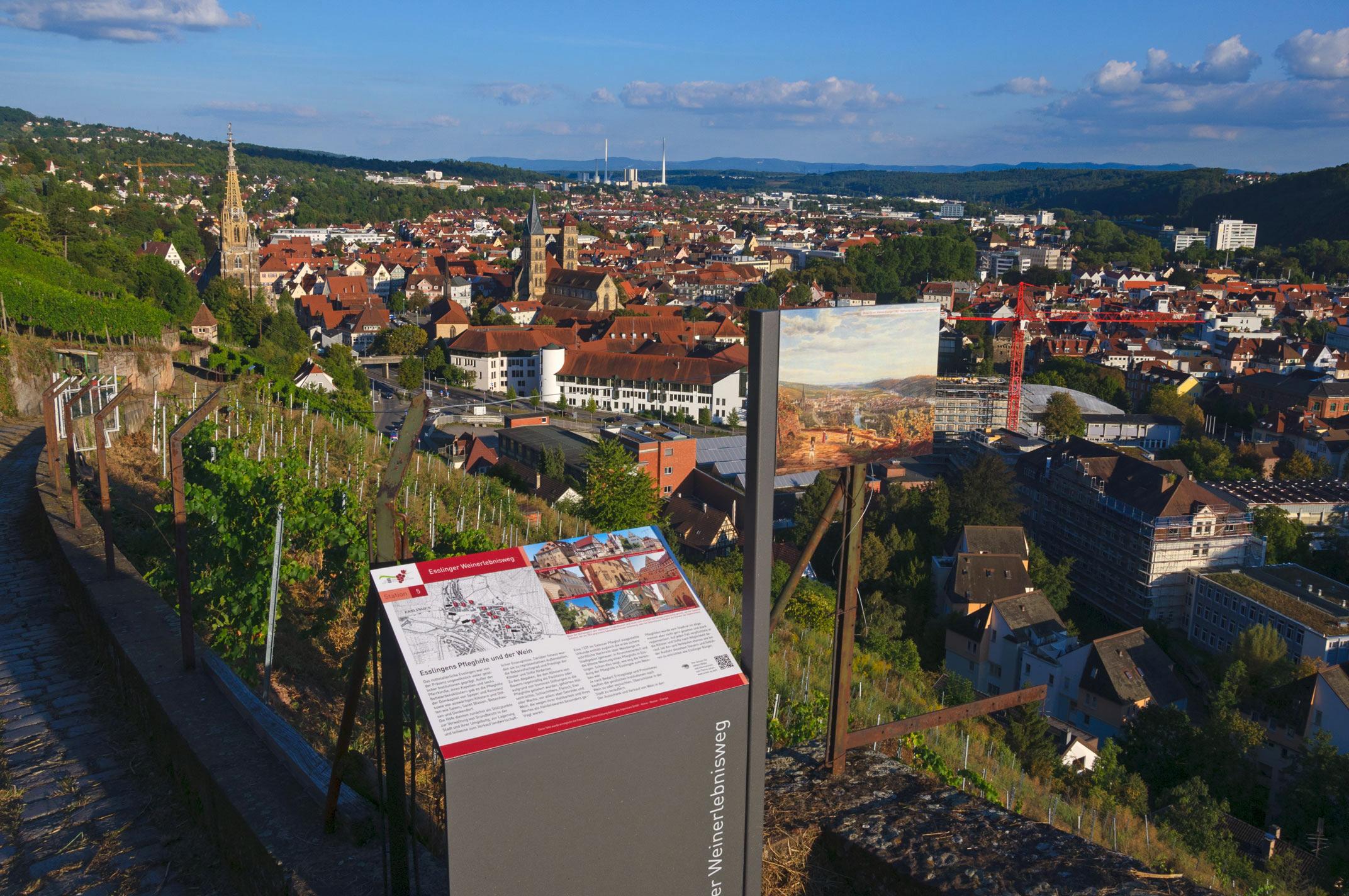 Ein schönes Weinerlebnis: Der Blick auf Esslingen vom Weinerlebnisweg aus