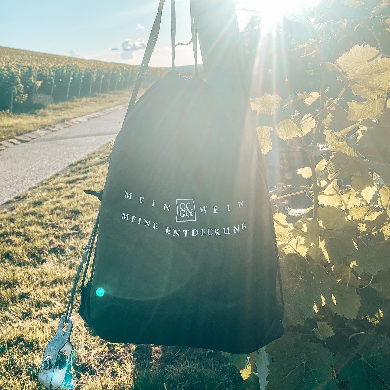 Der Weinpicknick-Rucksack der Weingärtner Cleebronn-Güglingen im Weinberg in der Sonne