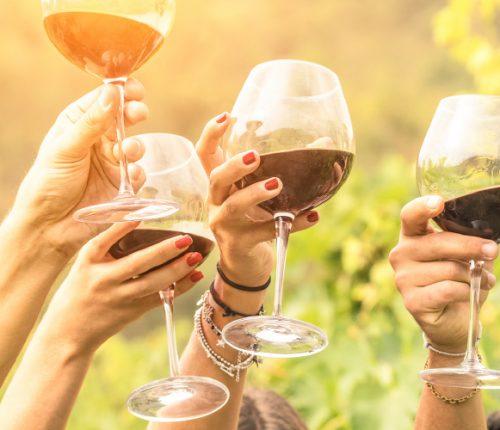 Die Hände mehrerer Personen halten gefüllte Weingläser in die Luft