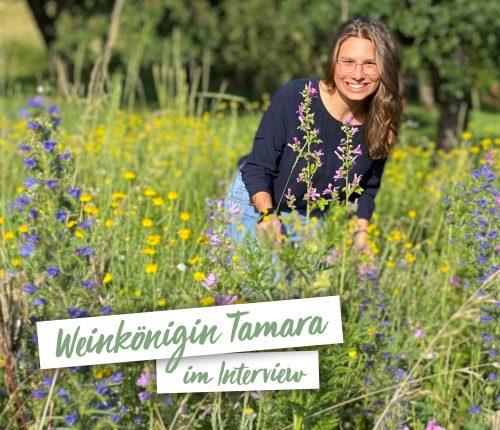 Interview mit der Württembergischen Weinkönigin Tamara Elbl
