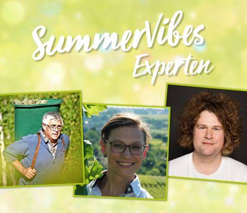 """Der zweite Teil der Experten der Online-Verkostung """"SummerVibes aus der Weinheimat""""."""