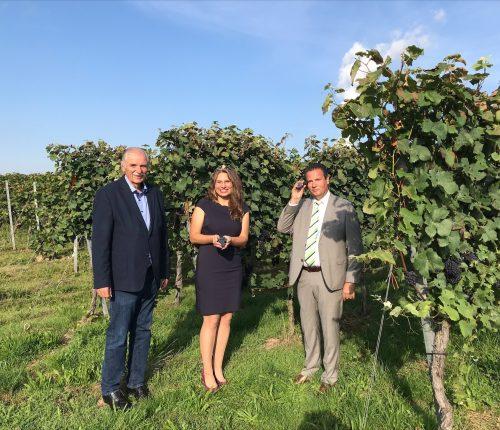 Weinbaupräsident Hermann Hohl, Weinkönigin Tamara Elbl, Weinbauminister Peter Hauk